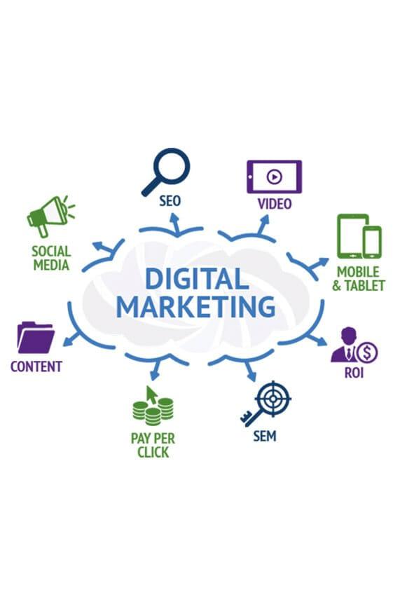 marketing & seo